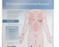 Welch Allyn 71300-0000 ECG Hookup Wall Chart